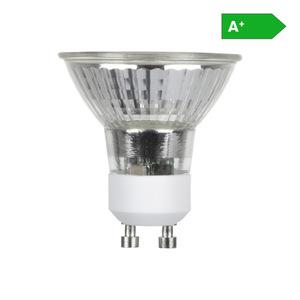 KODi LED-Leuchtmittel 5 Watt