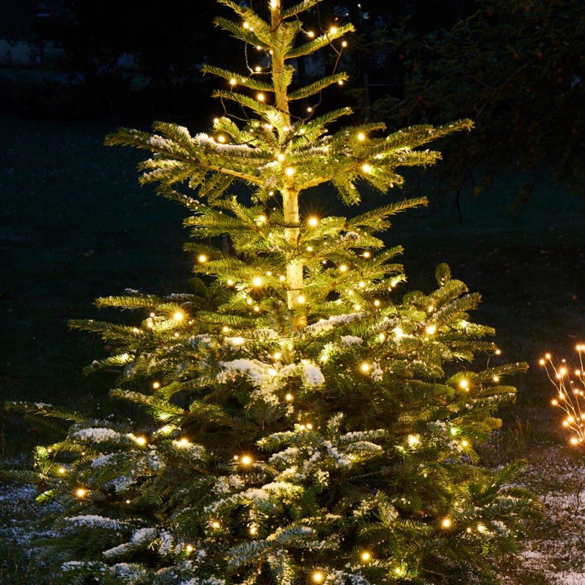 Bild 2 von LIGHTZONE     LED-Außenlichterkette