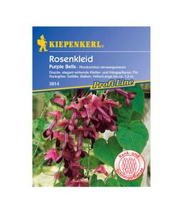 Kiepenkerl Saatgut Rosenkleid Purple Bells