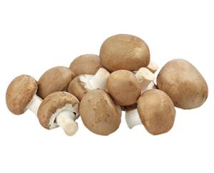 Champignons braun*
