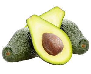 Avocado im Netz*