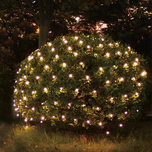 I-Glow LED-Lichternetz