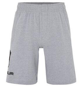 Under Armour Shorts, Jersey, Eingrifftaschen, Gummibund, für Herren, hellgrau meliert, XL