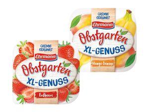 Ehrmann Obstgarten XL-Genuss