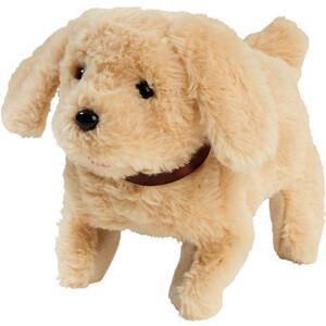 Simba Chichi Love Hund