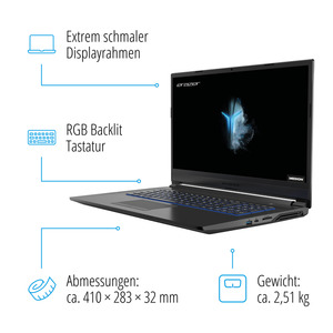 "MEDION ERAZER® P17611, Intel® Core™ i7-9750H, Windows 10 Home, 43,9 cm (17,3"") FHD Display, GTX 1050, 512 GB SSD, 1 TB HDD, 16 GB RAM, Core Gaming Notebook"