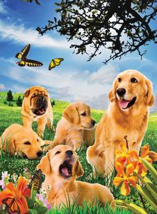 Noris Spiele Puzzle 500 tlg. mit 3D-Effekt  Hunde; 606031083