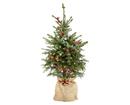 Bild 2 von GARDENLINE®  Dekorierter Weihnachtsbaum
