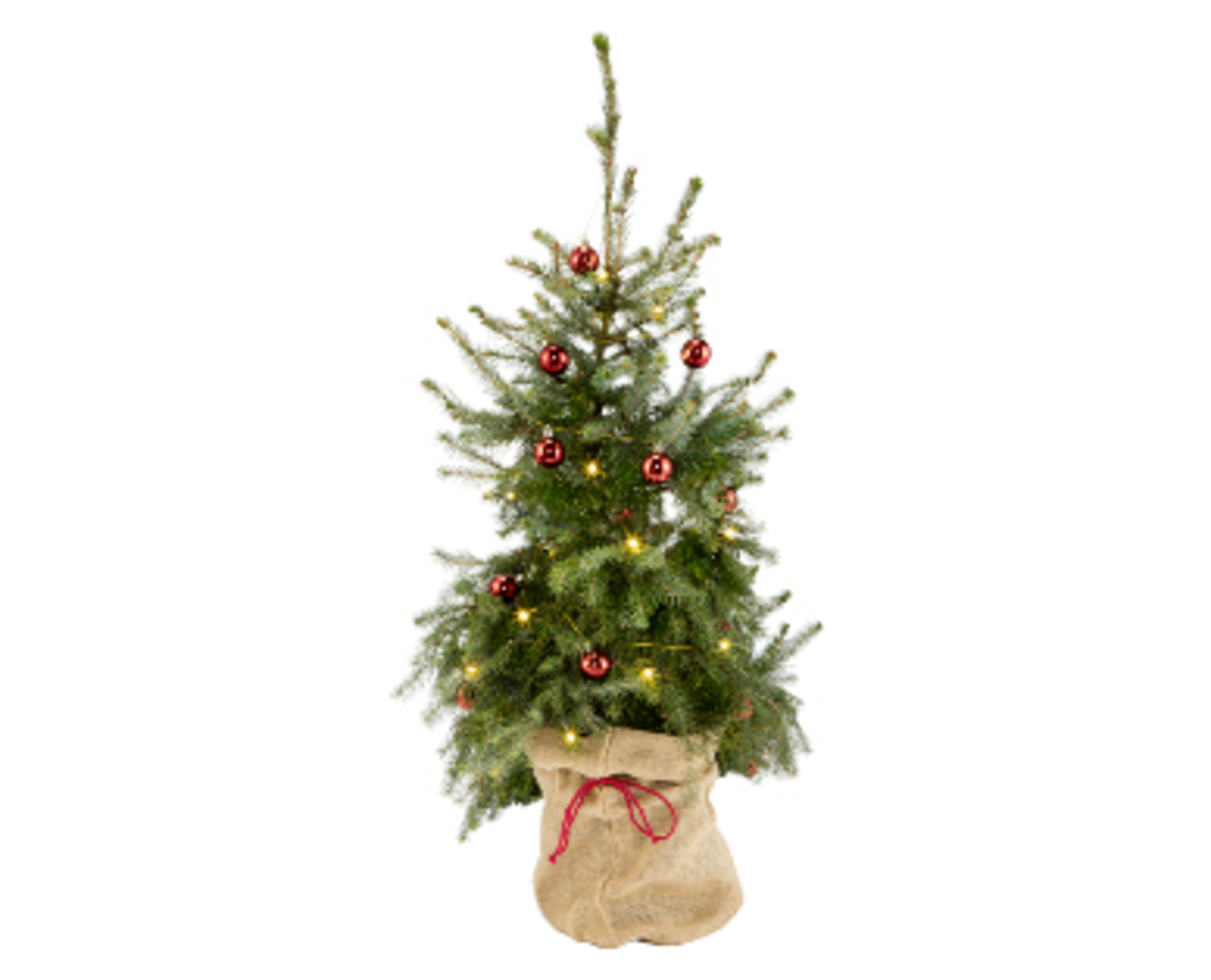 Bild 3 von GARDENLINE®  Dekorierter Weihnachtsbaum