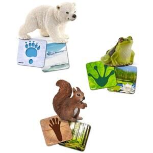Schleich - 42474 Lernkarten Wild Life