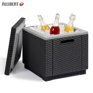 Allibert Ice Cube 3in1 40l Graphit