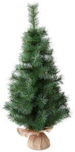 Kaufland.De/Weihnachtsbaum