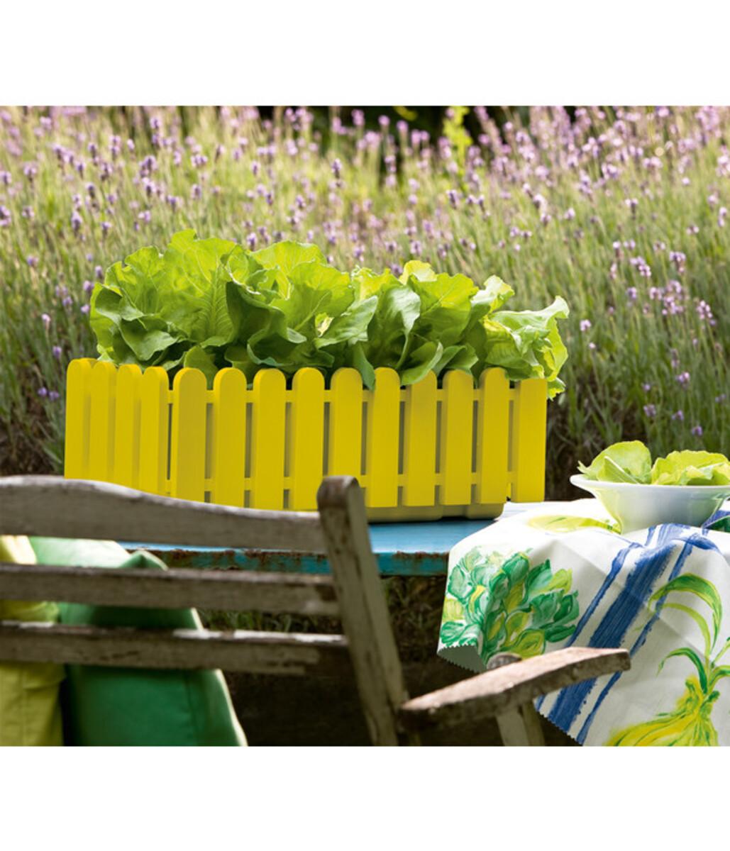 Bild 2 von Emsa Kunststoff-Blumenkasten Landhaus, rechteckig