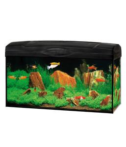Gute Wahl Aquarien-Set Scout LED, 54 Liter