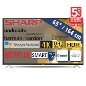 65BL2EA • 3 x HDMI, 2 x USB, Micro-USB, Micro-SD-Kartenslot, CI+ • geeignet für Kabel-, Sat- und DVB-T2-Empfang • Maße: H 84,5 x B 146,2 x T 8,7 cm • Energie-Effizienz A+ (Spektrum A+++ bis