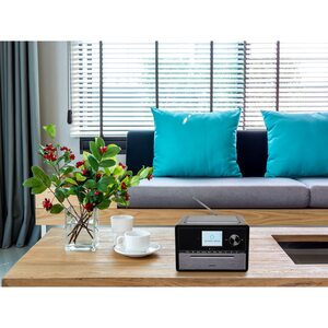 """MEDION LIFE® S64007 Mikro Audio System mit Amazon Alexa Sprachsteuerung, 7,1 cm (2,8"""") TFT-Farbdisplay, DAB+/PLL-UKW, Spotify®-Connect, WLAN, Party Mode, EQ für Bass- und Höheneinstellung, 15 W R"""