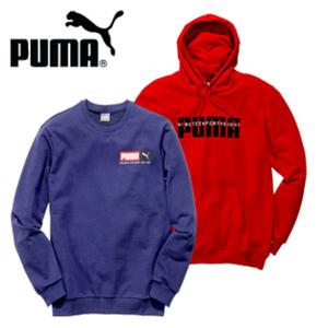 Damen- oder Herren- Kapuzensweatshirt oder Sweatshirt • versch. Farben und Größen, ab 2 Stück je