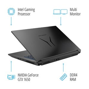"MEDION ERAZER® P17613, Intel® Core™ i7-9750H, Windows 10 Home, 43,9 (17,3"") FHD Display, GTX 1650, 512 GB SSD, 1 TB HDD, 16 GB RAM, Core Gaming Notebook"