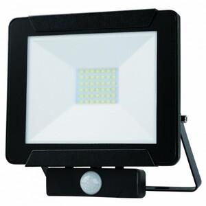 PRIMASTER LED Außen-Strahler ,  30 W, schwarz, mit Bewegungsmelder
