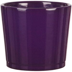 Scheurich Frühlingstopf 883 Ø 10 cm Pure Violet