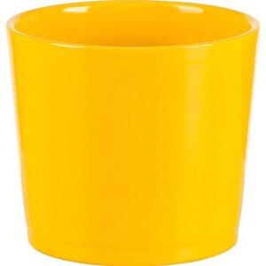 Scheurich Frühlingstopf 883 Ø 12 cm Fresh Yellow