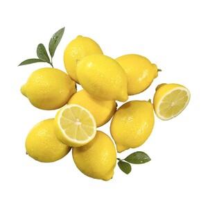 Spanien Zitronen Kennzeichnung siehe Etikett, jedes 400-g-Netz