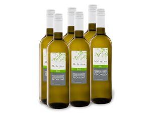 6 x 0,75-l-Flasche BIO Pecorino Terre di Chieti IGP, Weißwein