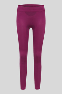 Ski-Thermo-Leggings - seamfree