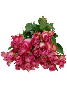 Blumenstrauß mit Rosen   in pink, Ø 35 cm