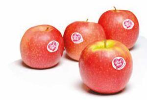 Äpfel Pink Lady