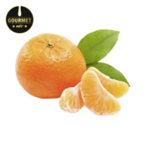 SpanienGourmet HIT Mandarinen