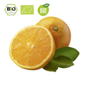 SpanienOrangen oder Bio HIT Orangen