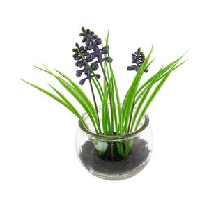 Hyazinthe im Glas (Kunstpflanze, 19 cm)