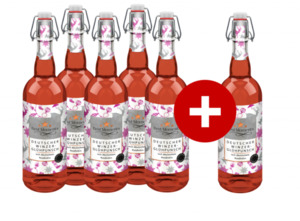 5 + 1 Best Moments Winzer Glühpunsch, rosé