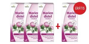 Hübner  Mariendistel L-Tonikum 3x 250 ml + gratis 1x 250 ml