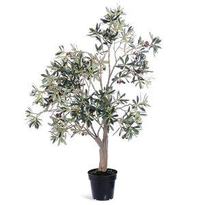 Olivenbaum im Topf, H:116cm, grün