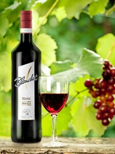 Blanchet Rotwein Merlot Trocken
