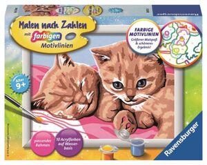 Malen nach Zahlen - Zwei schmusende Katzen