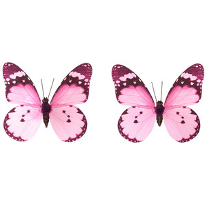 2 Schmetterling-Clips