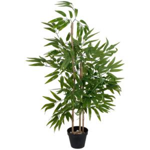 Bambuspflanze im Topf