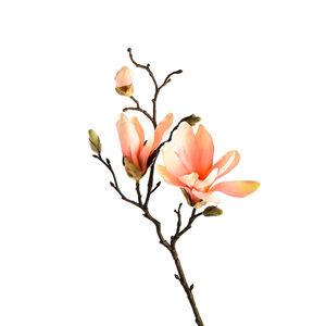 Zweig Magnolie, L:48cm, pfirsich