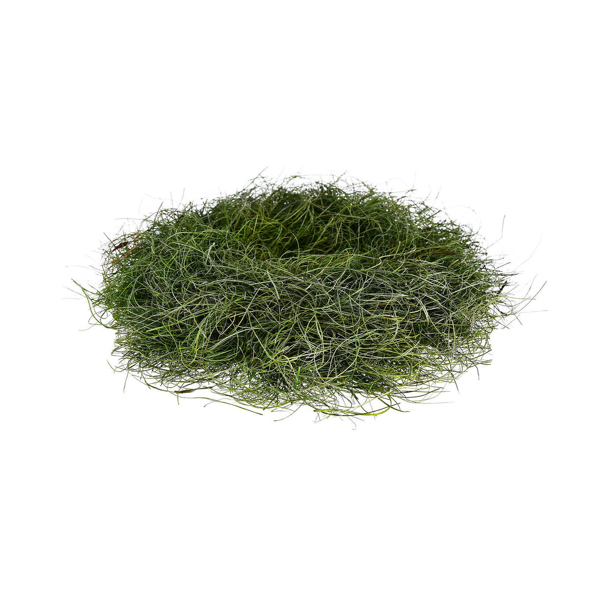 Bild 2 von Kranz Gras, D:26cm, grün
