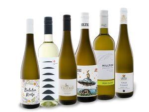 6 x 0,75-l-Flasche Weinpaket Ungarn, Weißwein trocken