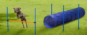 Agility-Übungsset für Hundesport
