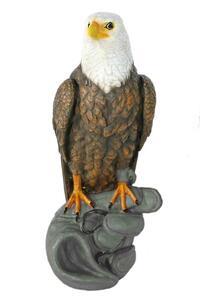Casa Collection - Adler auf Handschuh sitzend