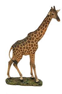 Casa Collection - Giraffe