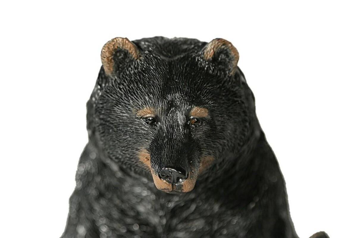 Bild 2 von Casa Collection - Schwarzbär mit Jungen