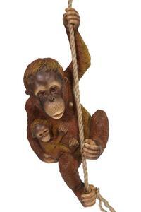 Casa Collection - Orangutan mit Jungen am Seil
