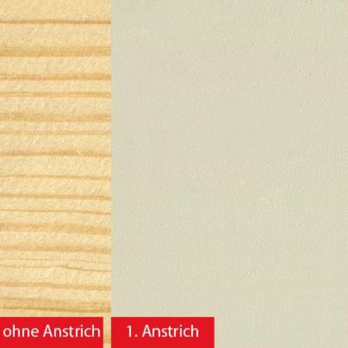 Bild 3 von BAUFIX natural Express-Deckfarbe hellgrau