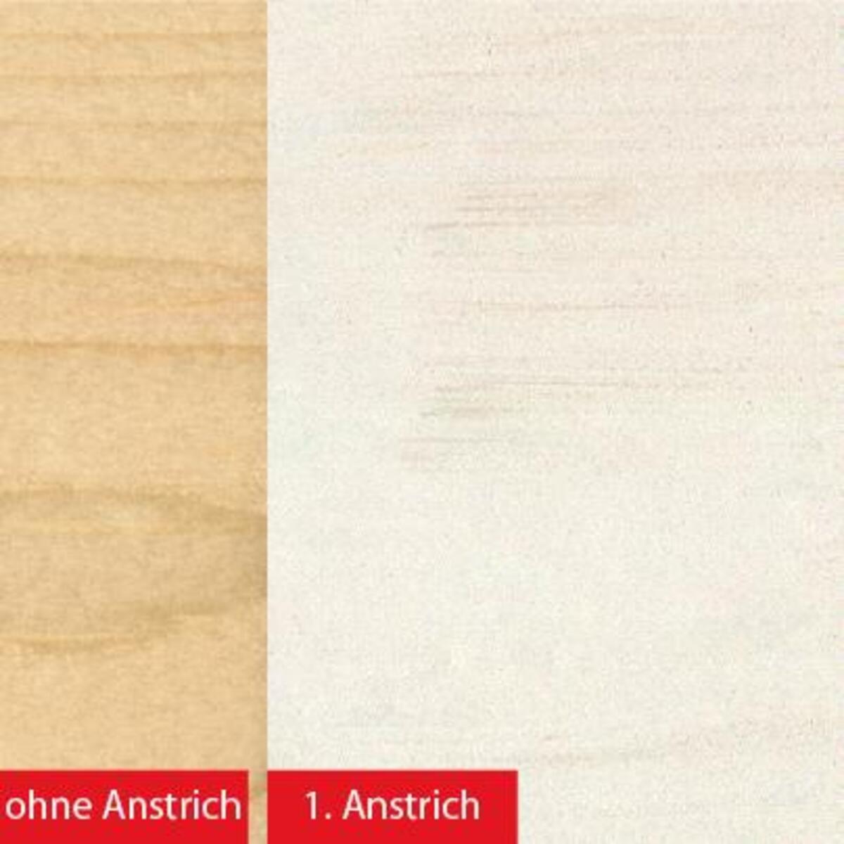 Bild 3 von BAUFIX natural Express-Deckfarbe weiß